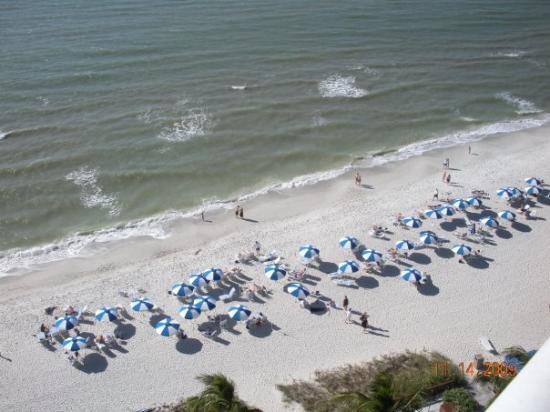 Napoli, FL: AAAAHHHHHH another view from my balcony