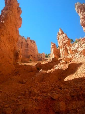 Bilde fra Bryce Canyon National Park