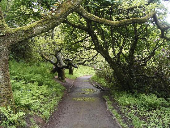 Culzean Castle and Country Park: Alentours du chateau CULZEAN