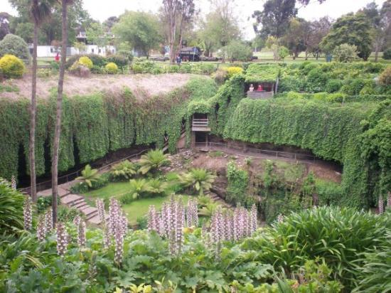 The Gardens in a sink hole at Mount Gambier, South Australia
