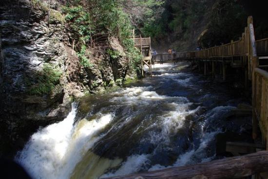 Bilde fra Bushkill Falls