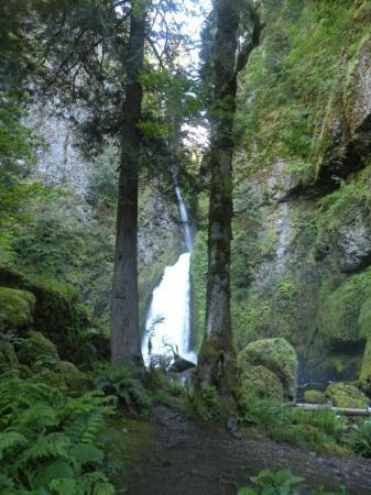 Hood River, OR: Leaving the falls on the trail