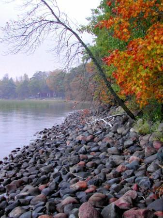 Isle, MN: Mille Lacs shoreline