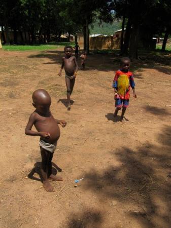 Pendjari National Park, Benin: IMG_0808