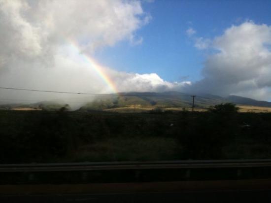 Bilde fra Lahaina