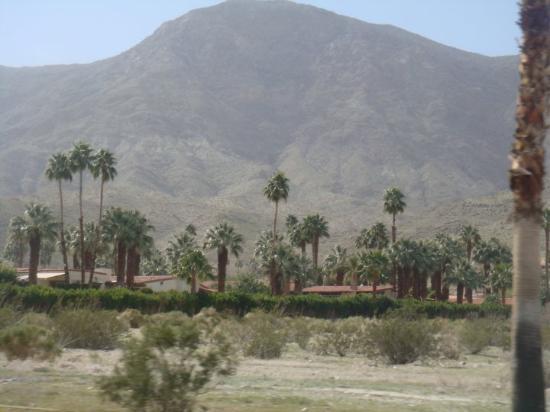 Palm Springs, CA: near our villa