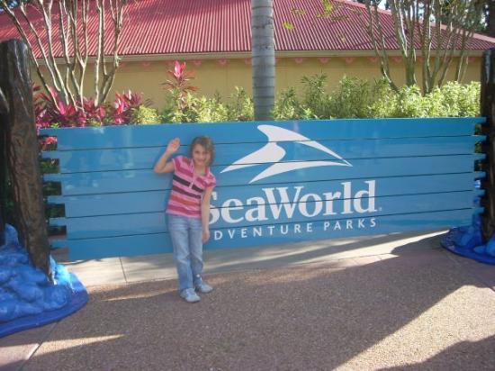 SeaWorld Orlando: Seaworld in Orlando, Florida  December 2009