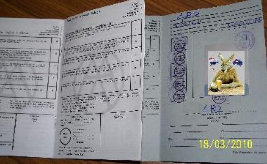 australian drivers license for international students