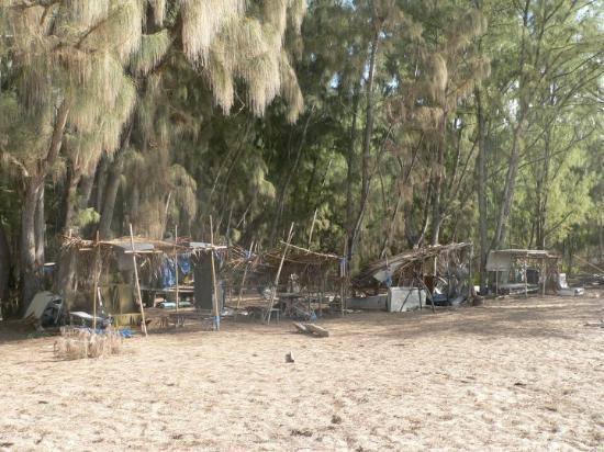 Oahu, HI: Lost Camp