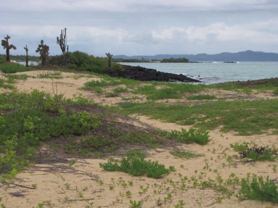 Puerto Ayora, Ecuador: going to beach.... no one to the left