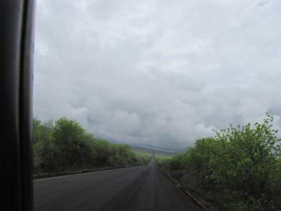 Puerto Ayora, Ecuador: long and winding raod.... its st pats day, my rambelings are long.....