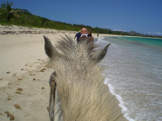 Shangri-La's Fijian Resort & Spa: Horseriding on the beach.