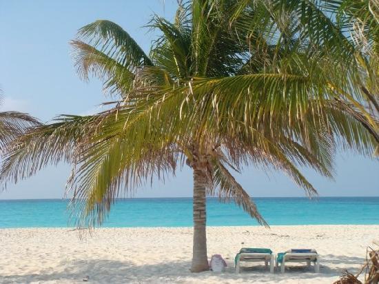 Iberostar Playa Blanca: playa sirena