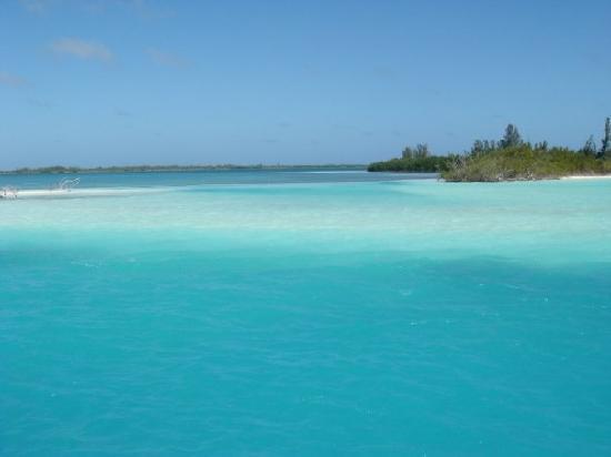 Iberostar Playa Blanca: catamarano