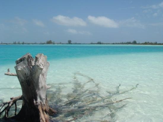 Iberostar Playa Blanca: playa sir