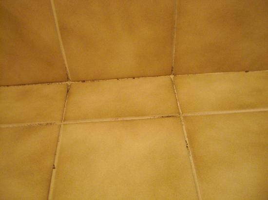 Bellevue Hotel: Zustand Bodenfliesenbereich