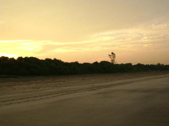 Diveagar, India: South side of the Beach - early morning