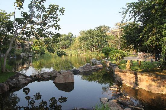 The Kingdom at Victoria Falls: Fish Ponds