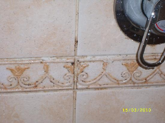 Sierra Sharm El Sheikh: mould in the shower