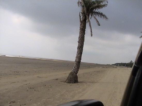 Debraj Beach Resort: Driving on the beach