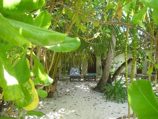 Holiday Island Resort & Spa: Nice shady area at rear of rooms