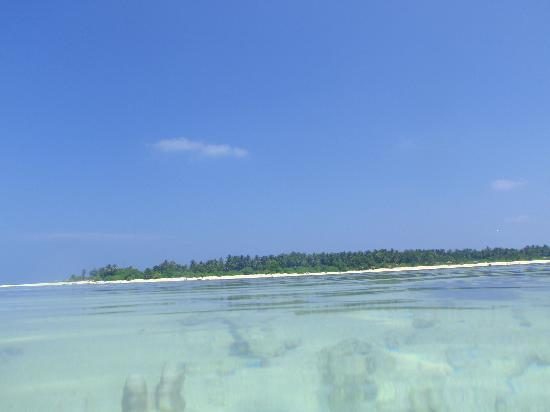 Holiday Island Resort & Spa: View of island from reef