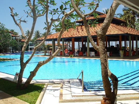 Club Hotel Dolphin: pool of srilanka Hotel Club Dolphin