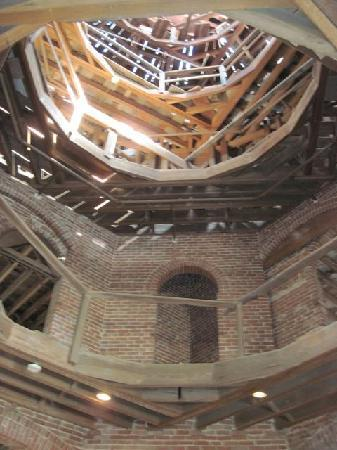Longwood: Looking Up Into the Dome