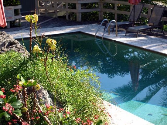 Casa Grande Mountain Retreat: Casa Grande Pool