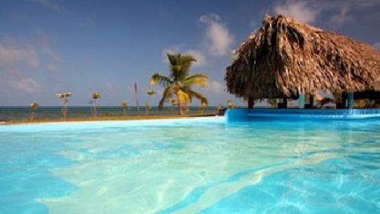 Sarkiki Villas: Beachfront pool with 2 swim up bars