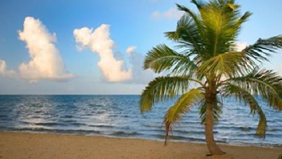 Sarkiki Villas: Sandy beach that's safe for swimming.
