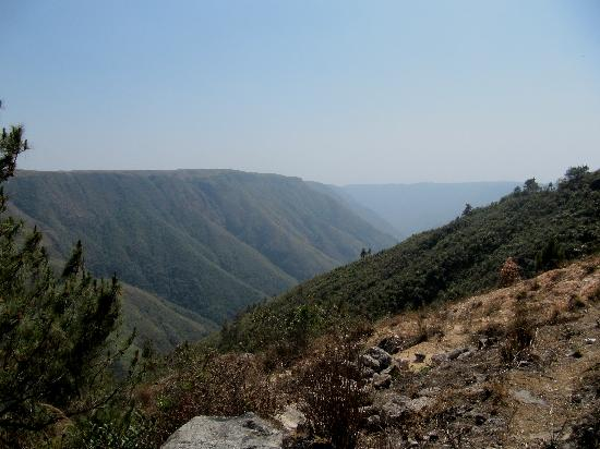 Cherrapunjee, India: Looks like the grand canyon but in green