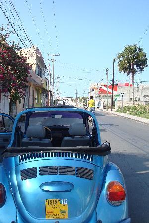 Mi Casa en Cozumel: view down the street to cool cemetary