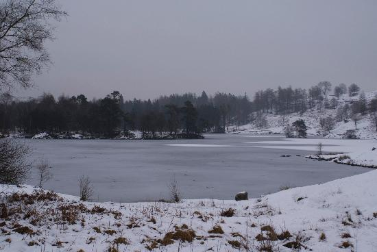 The Drunken Duck Inn: Tarn Hows in winter