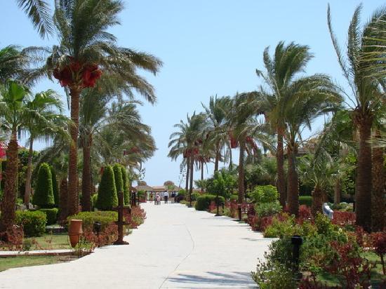 Ali Baba Palace: Path to the Beach