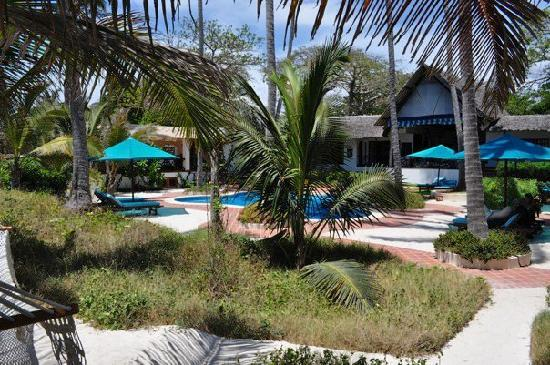Diani Blue: The pool, overlooked by the open-plan living area (to the right).