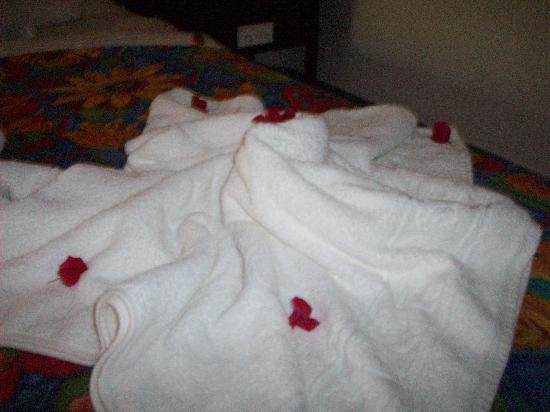 Brisas del Caribe Hotel: March 10, 2010