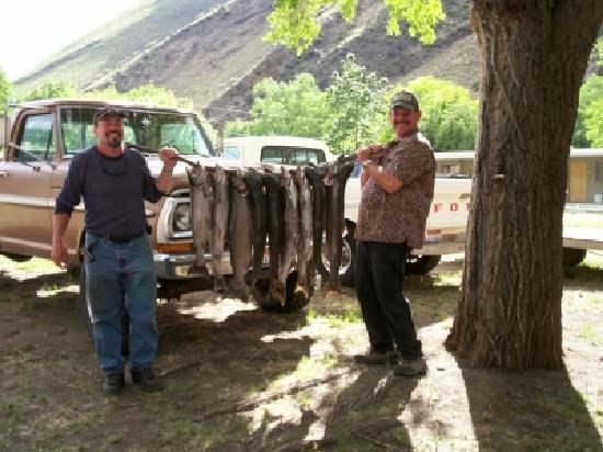 Big Iron Motel: Great fishing