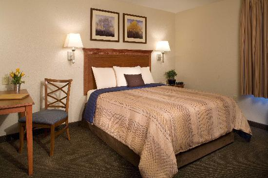 Candlewood Suites Mount Pleasant: King Room