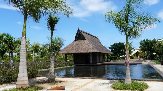 Club Med La Plantation d'Albion: Vue du parc