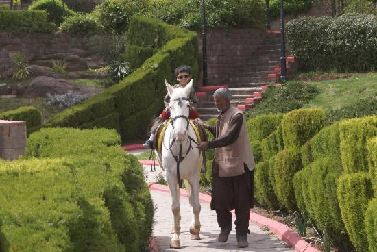 Bhurban, Pakistan: Horse and owner in gardens