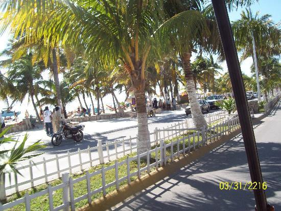 Isla Mujeres, Mexico: love the landscaping
