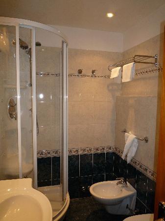 Hotel Raffaello: Shower and bidet