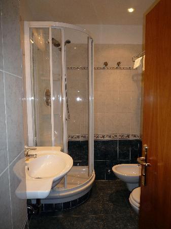Hotel Raffaello: Shower and sink