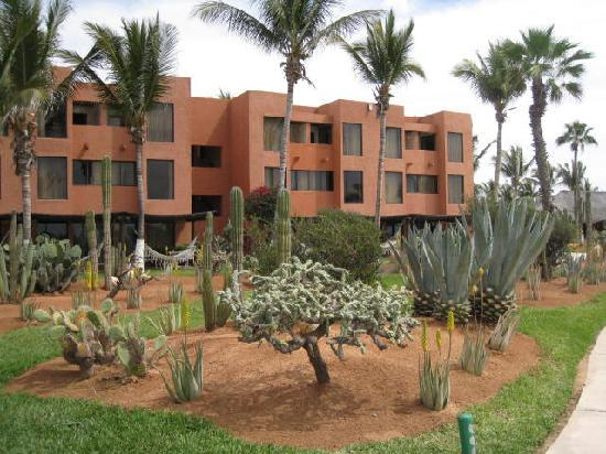 Holiday Inn Resort Los Cabos All-Inclusive: Grounds.