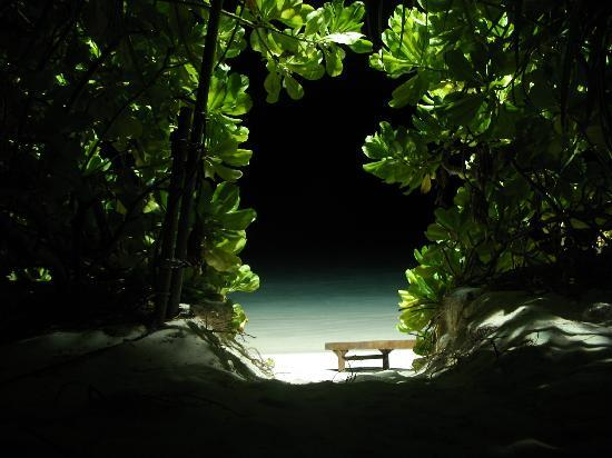 Holiday Island Resort & Spa: Vista notturna dal bungalow