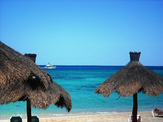 Occidental Cozumel: view from the pool