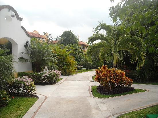 Occidental Cozumel: the resort