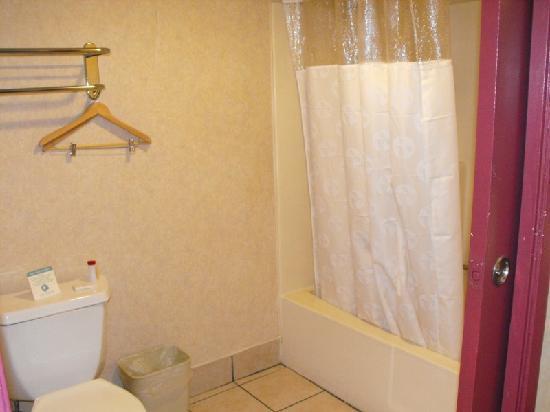 Ramada by Wyndham Anaheim Convention Center: Bathroom