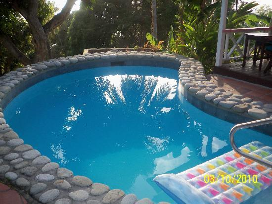 Stonefield Villa Resort: Plung pool